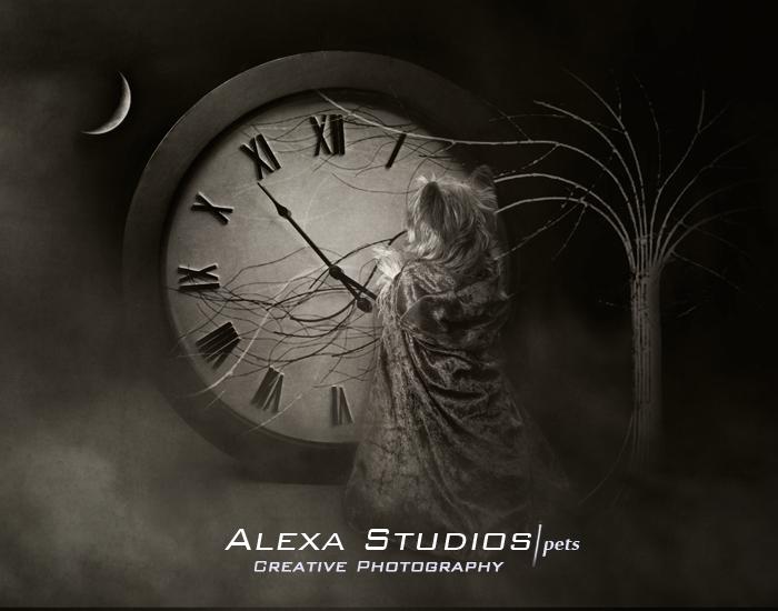 AlexaStudios - A New World with Chloe